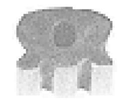 Metalcaucho 00552